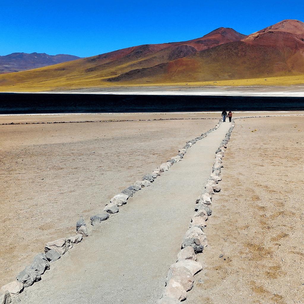 Northern Chile and the Atacama Desert